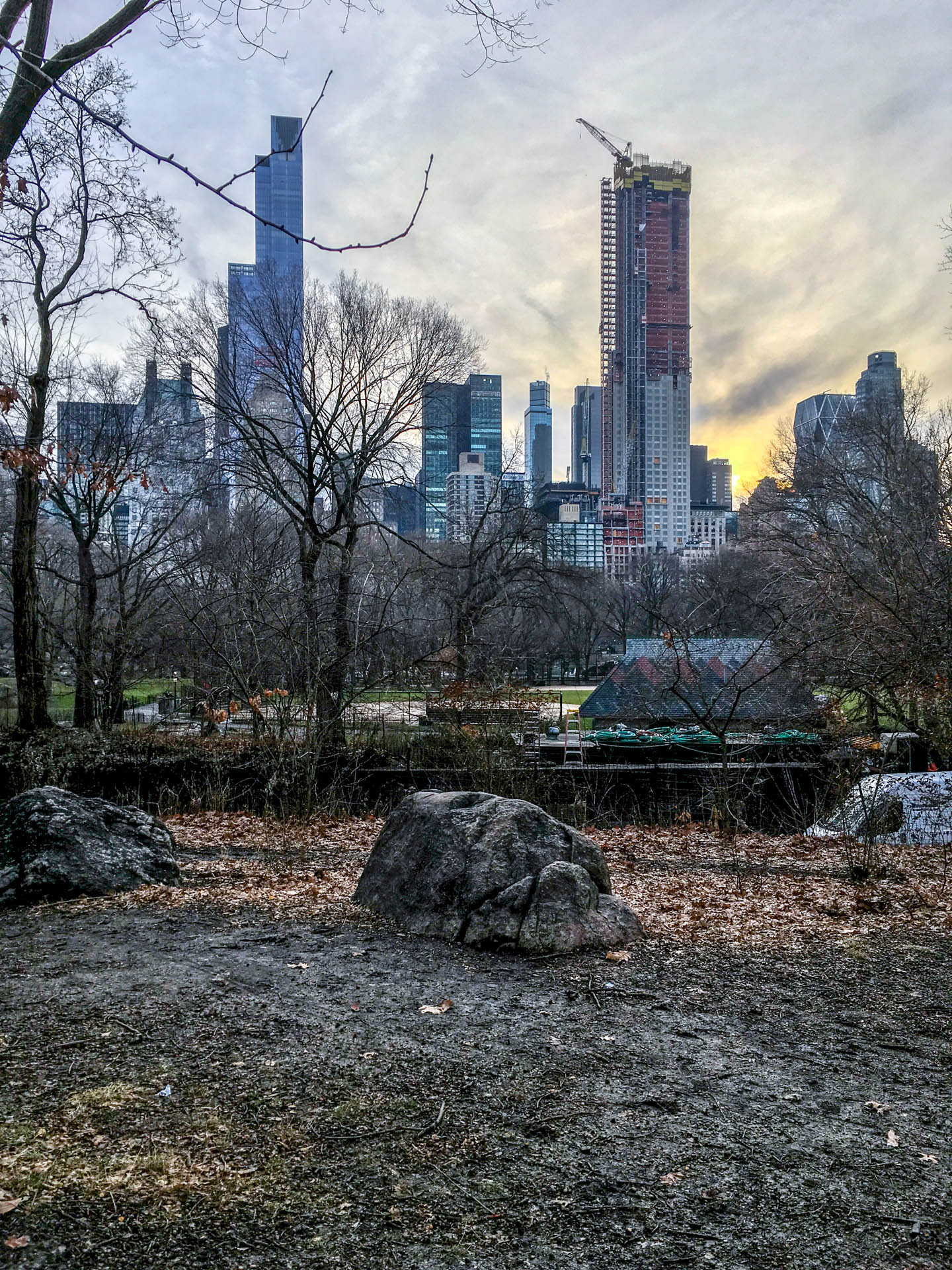 Central Park with bare dead trees and no grass.